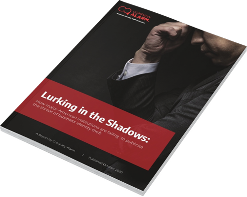 Cover of Lurking in the Shadows report